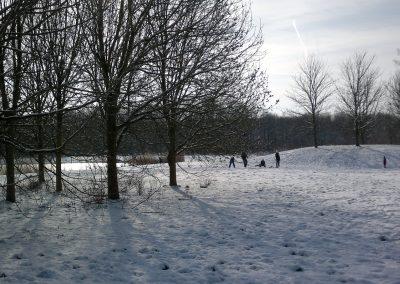 Vogelhorst Sneeuw
