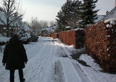 Vogelhorst Sneeuw Fazantlaan